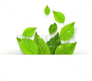 Spring Vector Leaves Background Design - Amazeindesign