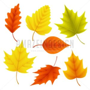 Autumn Leaves Vector Set for Fall Seasonal Elements - Amazeindesign