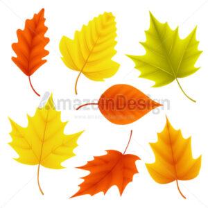 Autumn Leaves Vector Set for Fall Seasonal Elements - Amazeindesign