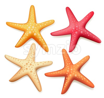Starfish Vector Set Realistic Colorful in White Stock Vector