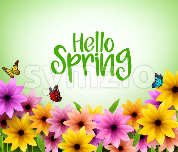 Vector for Spring Season of Colorful Flowers Background Stock Vector