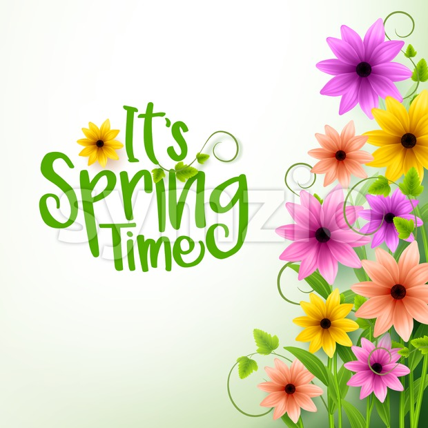 Vector Spring Time Text in White Background with Realistic 3D Colorful Flowers and Vines and White Space for Message in ...