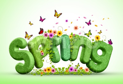Spring 3D Rendered Text Poster Design Illustration Stock Photo