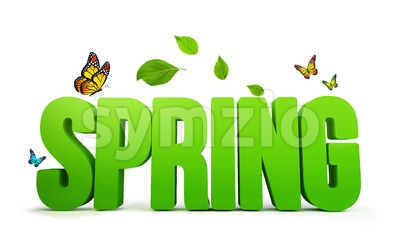 3D Rendered Spring Word Isolated in White Stock Photo