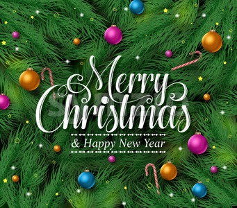 Merry Christmas Greetings in Pine Leaves Background Stock Vector