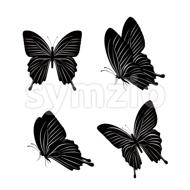 Set of Vector Silhouette Butterflies Isolated Stock Vector