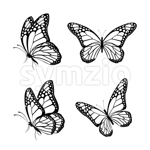 Set of Silhouette Butterflies Vector Illustration Stock Vector