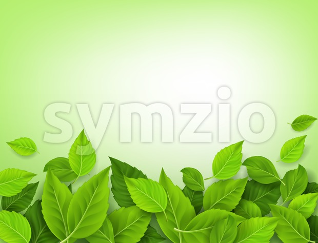Spring Realistic Vector Leaves Background Stock Vector