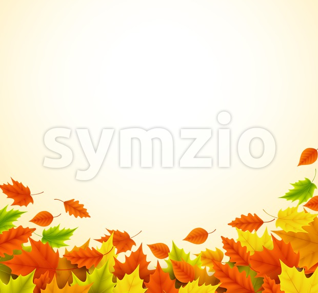 Fall vector background for autumn season with collection of orange and yellow maple leaves falling and with empty or blank ...