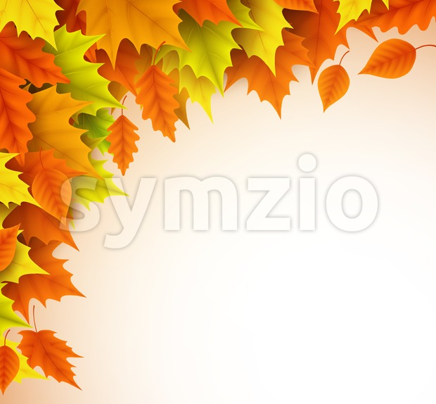 Autumn vector background template. Fall season maple leaves elements with empty blank white space for text. Vector illustration. This vector ...