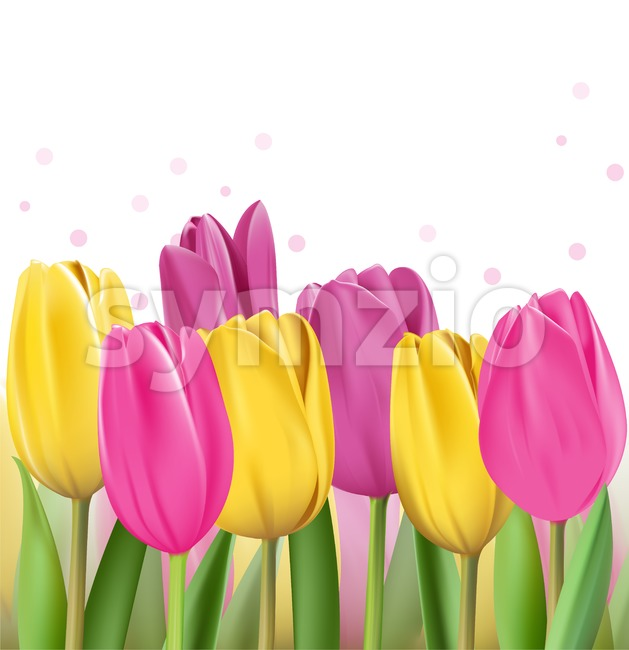 Colorful Tulips Vector Illustration Stock Vector