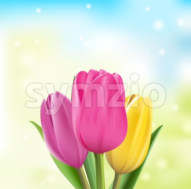 Realistic Colorful Tulips Vector Illustration Stock Vector