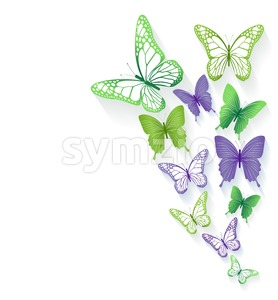 Vector Colorful Butterflies Background Stock Vector