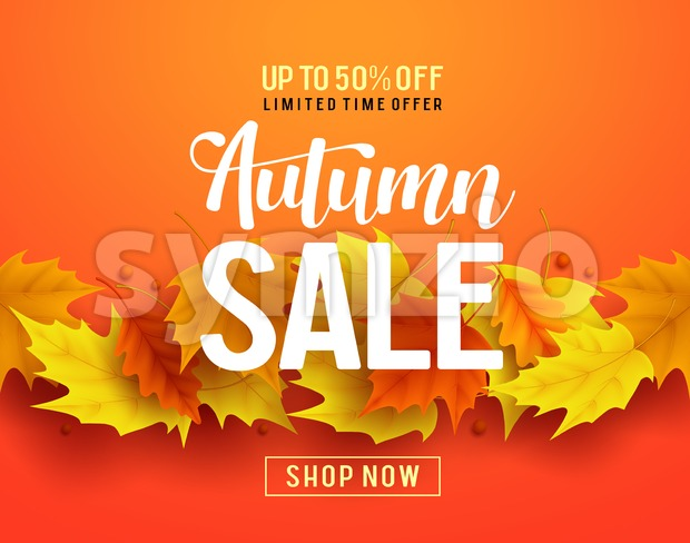 Autumn sale vector banner design with maple leaves elements in orange background for fall season shopping discount promotion. Vector illustration. ...