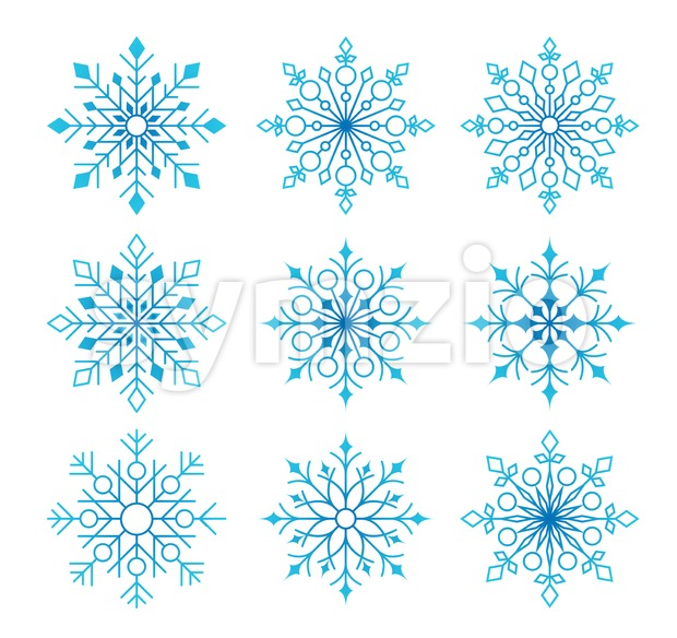 Beautiful Collection of Snow Flakes Isolated Stock Vector