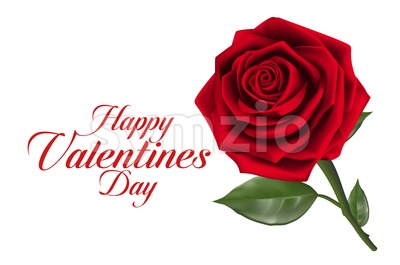 Valentines Day with Realistic Red Rose Vector Stock Vector