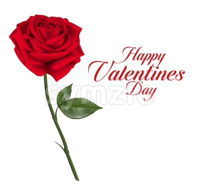 Sweet Valentines Day with Red Roses Vector Stock Vector